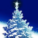Rozsvícení vánočního stromu s prodejním jarmarkem 1
